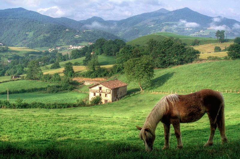 Casa rural bergatxenea erratzu pirineo monta a navarra - Casa rural en pirineo catalan ...