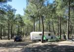 Camping Calonge