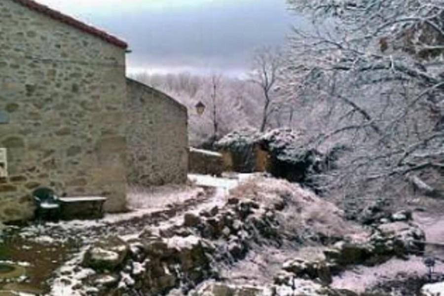 Casas rurales que admiten perros animales vila gredos - Casas rurales en la nieve ...