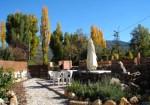 El Refugio de la Saúca - Saúco