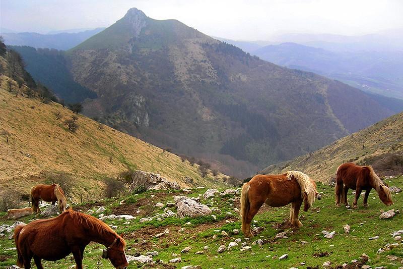 Casa rural ezkilenea lekunberri pirineo monta a navarra - Casa rural lekunberri ...