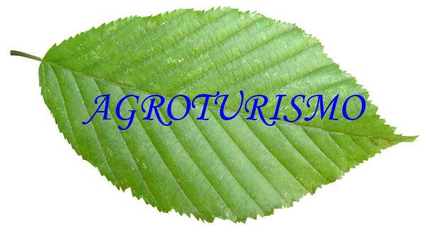 Agroturismo, Apicultura y Actividades