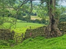 Primavera con esencia rural