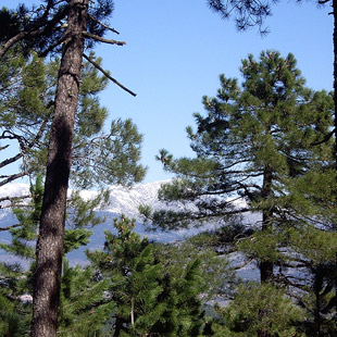 Sierra de Guadarrama, disfrute natural para todos