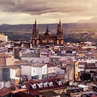 Jaén, capital del Santo Reino y aceite de oliva