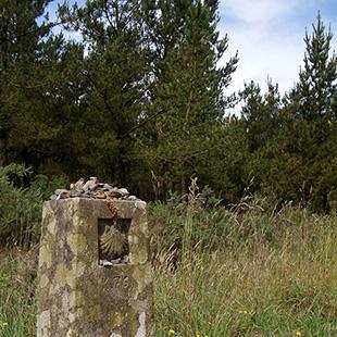 Camino de Santiago en Lugo, Grial y Caballería