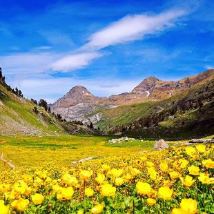 Benasque y Posets-Maladeta, disfrutar el Pirineo
