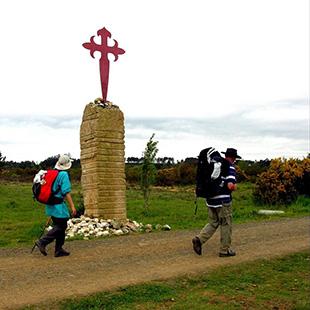 Camino de Santiago por Coruña, final compostelano