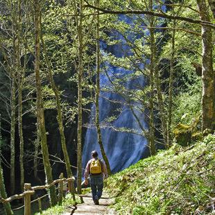 Eo, Oscos, Terras de Burón, Reserva de la Biosfera