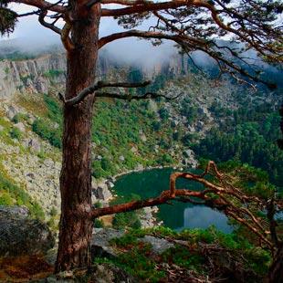 Vinuesa y Laguna Negra, agua, pinar y Machado