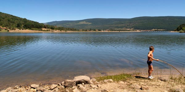 Alojamientos Rurales Recomendados En Vinuesa Y Laguna Negra Agua Pinar Y Machado