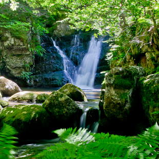 Sierra Cebollera, el Parque Natural de los Cameros