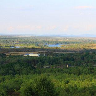 Sierra de la Culebra, aullido lobuno y berreas
