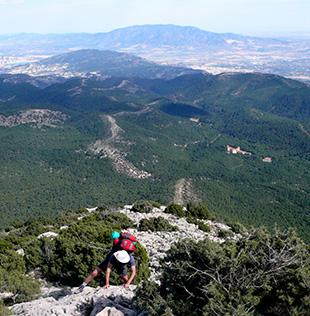 Sierra Espuña, barrancos, bosques y agua cantarina