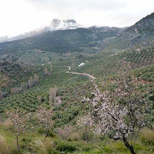 Sierra Mágina, un Parque Natural sorprendente